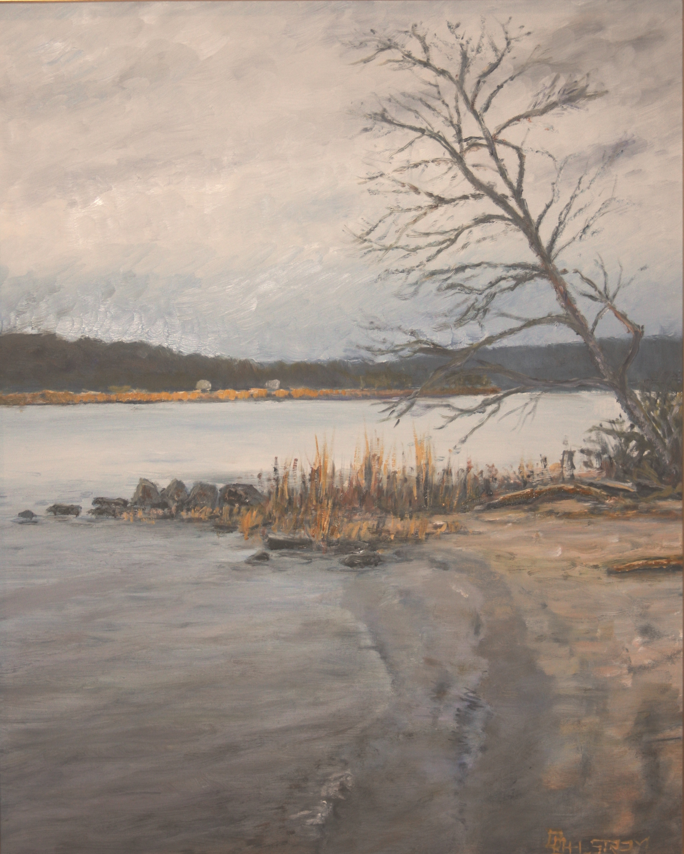"""""""Leaning Tree, Old Lyme"""""""