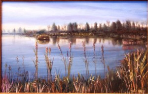 Pond at Meigs Point (Sold)